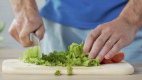 Укомплектуйте личным составом прерывать зеленые салат и томаты дома, подготавливающ здоровый обедающий семьи акции видеоматериалы