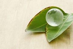 укомплектуйте личным составом руку держа малый глобус земли и зеленые лист, концепцию дня земли концепция давать и здоровья Стоковая Фотография RF