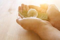 укомплектуйте личным составом руку держа малый глобус земли и зеленые лист, концепцию дня земли концепция давать и здоровья Стоковое Изображение RF