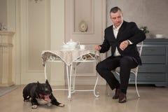Укомплектуйте личным составом seatting на таблице и смотреть вахту Около пастбищ питбуль собаки или терьер Стаффордшира черноты в Стоковое фото RF