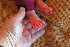 Укомплектовывает личным составом руку держа baby& x27 новорожденного; s малые ноги стоковые фото