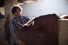 Укомплектуйте личным составом ласкать коричневую лошадь в конюшне стоковое фото rf