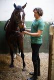 Укомплектуйте личным составом ласкать коричневую лошадь в конюшне стоковая фотография