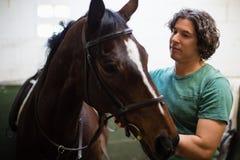 Укомплектуйте личным составом ласкать коричневую лошадь в конюшне стоковые фото