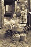 Укомплектуйте личным составом и 2 женщины с овощами в саде стоковые изображения rf