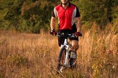 Укомплектуйте личным составом катание велосипедиста на велосипеде в лесе лета Стоковое Изображение