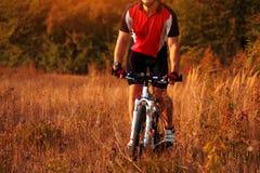 Укомплектуйте личным составом катание велосипедиста на велосипеде в лесе лета Стоковое Фото