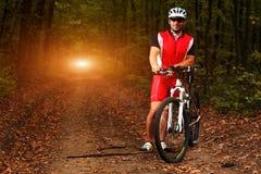 Укомплектуйте личным составом катание велосипедиста на велосипеде в лесе лета Стоковые Изображения RF