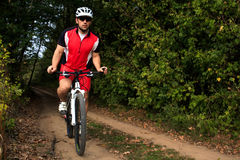 Укомплектуйте личным составом катание велосипедиста на велосипеде в лесе лета Стоковое фото RF