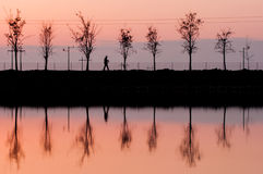 Укомплектуйте личным составом отражение проходя около озера на сумерк Стоковые Фото