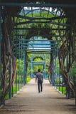 Укомплектуйте личным составом портрет с путем лабиринта в парке Стоковое Изображение