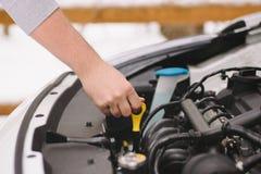 Укомплектуйте личным составом проверять уровень масла в его автомобиле используя dipstick Стоковое Изображение