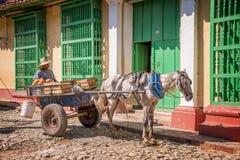 Укомплектуйте личным составом продавать овощи с его экипажом нарисованным лошадью в вымощенной улице в Кубе стоковое фото