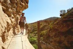 Укомплектуйте личным составом путешественника идя на деревянный footbridge на горы Стоковое Фото