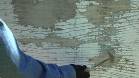Укомплектуйте личным составом работника очищая старую белую pealing краску с инструментом, 4K видеоматериал