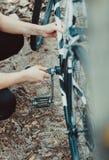 Укомплектуйте личным составом ремонт велосипеда в лесе Стоковые Изображения