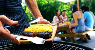 Укомплектуйте личным составом установку зажаренных мяса и мозоли на поднос для служения на партии барбекю outdoors видеоматериал
