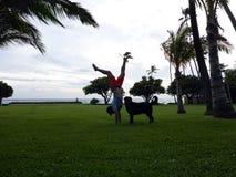 Укомплектуйте личным составом Handstanding на парке пляжа на сумраке рядом с черной собакой Стоковое Изображение