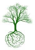 Укореняет мозг иллюстрация вектора