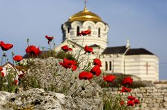 Украина Крым, церковь с Golden Dome на предпосылке красных маков Стоковая Фотография