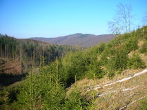 Украина прикарпатский взгляд сверху гор Стоковые Изображения