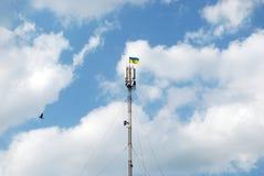 Украинская связь флага на высоте в клетчатая Стоковые Изображения