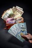 Украинские деньги в бумажнике Стоковое Изображение