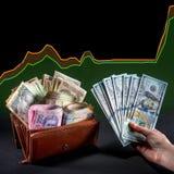 Украинские деньги в бумажнике Стоковое фото RF