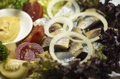 Украинские сельди и овощи закуски Стоковые Изображения RF