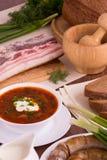 Украинский национальный овощной суп блюда - борщ Стоковая Фотография RF