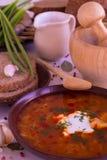 Украинский национальный овощной суп блюда - борщ Стоковая Фотография