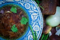 Украинский Lenten суп с белыми грибами Стоковая Фотография