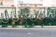 украшение велосипеда на стене Стоковые Изображения RF