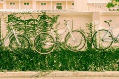 украшение велосипеда на стене Стоковые Изображения