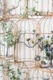 Украшение гнезда птицы на стене Стоковое Изображение RF