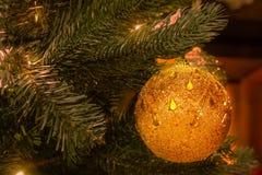 Украшение дерева Нового Года Конец-вверх ветви рождественской елки стоковые фото