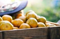 Украшение деревянной коробки и апельсина приносить внутрь стоковое фото rf