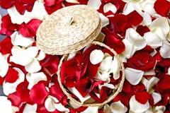 Украшение лепестков цветков Стоковые Изображения RF