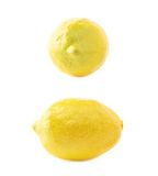 Украшение желтого лимона искусственное пластичное Стоковое Изображение RF