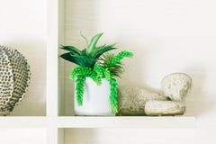 Украшение завода вазы в гостиной Стоковые Фотографии RF