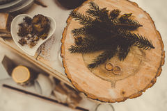 Украшение зимы Стоковая Фотография