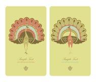 украшение карточки экзотическое Стоковые Изображения RF