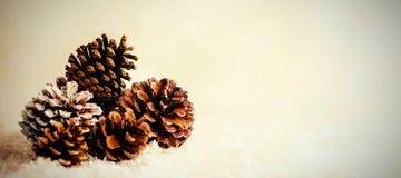 Украшение конуса сосны на поддельном снеге Стоковая Фотография RF