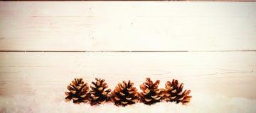 Украшение конуса сосны на снеге Стоковое Фото