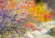 украшение красят покрашенную пушистую траву в различной Стоковые Изображения RF