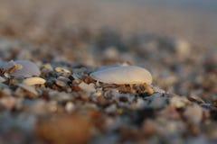 Украшение моря приставает другие цвета к берегу на заходе солнца Стоковая Фотография