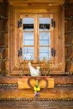 Украшение окна пасхи Стоковая Фотография
