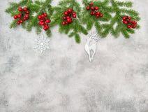 Украшение орнаментов красных ягод ветвей рождественской елки серебряное Стоковое Фото
