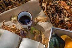 Украшение осени в саде на сухих покрашенных листьях Стоковое фото RF