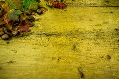 Украшение осени на деревенской деревянной доске Стоковые Изображения RF